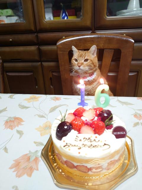 Happy BD miumiu2019-1.jpg