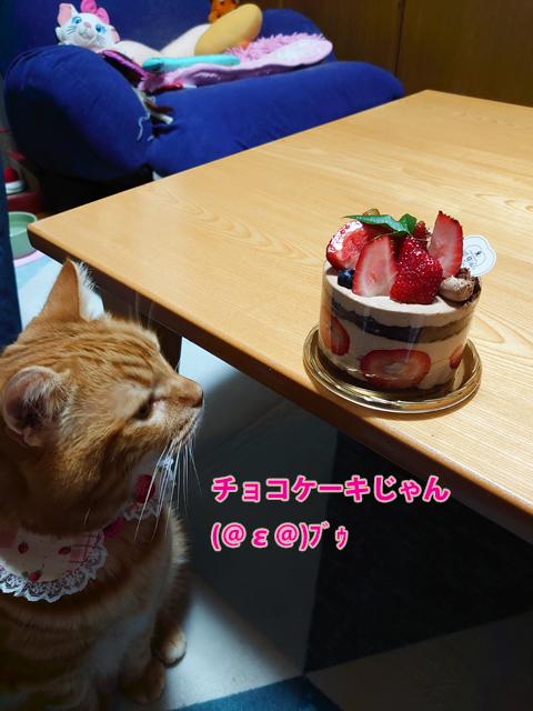 Happy BD miumiu2019-2.jpg